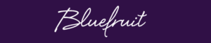 Bluefruit - software jobs in Cornwall